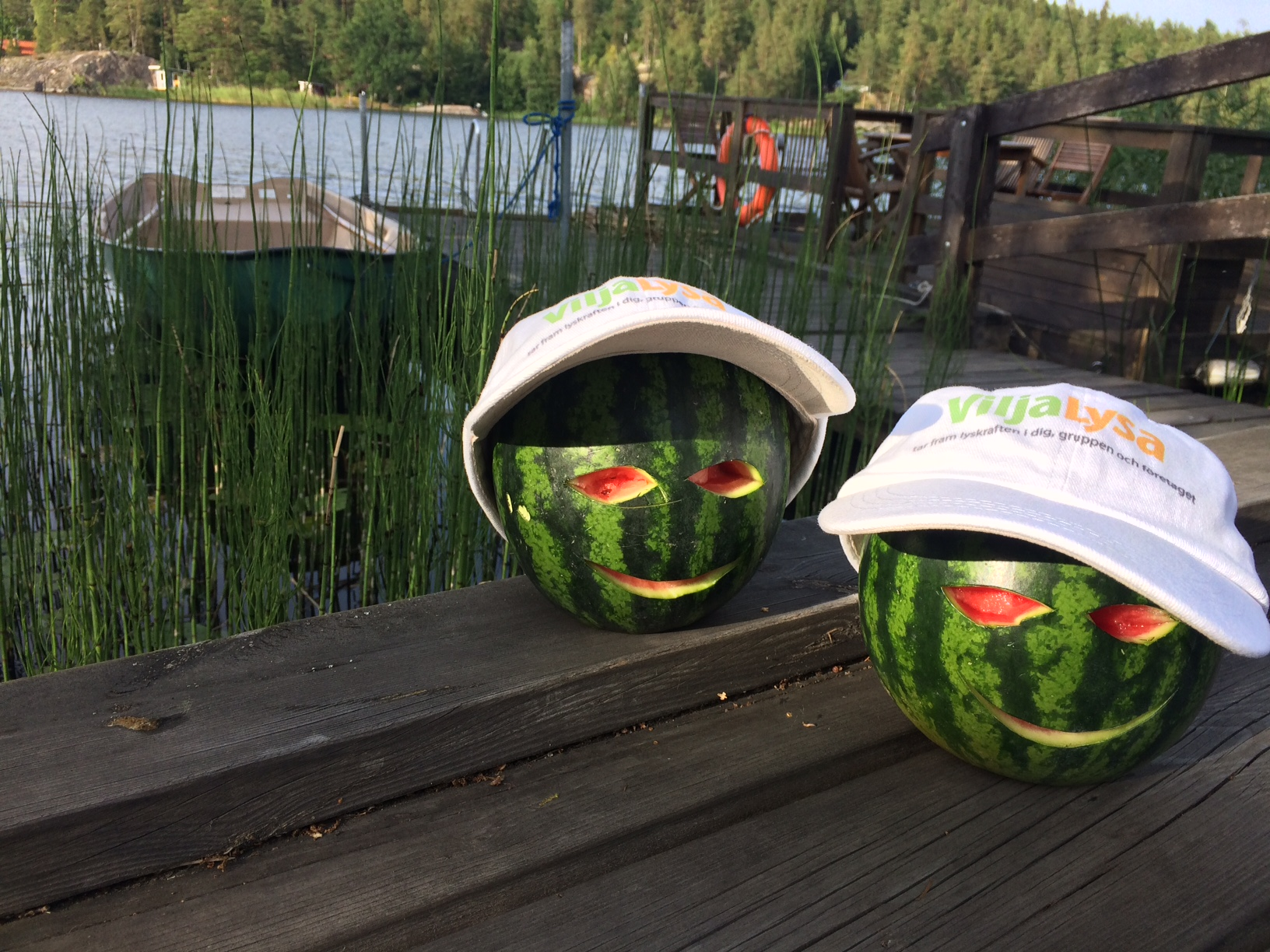 Sommarkortmelon 4258